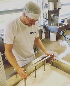 Cheese production at Christian Hansen