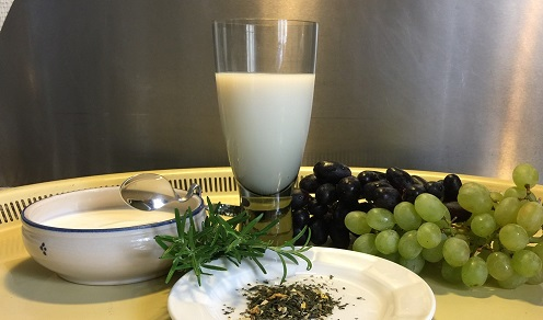 Plant polyphenols are found among others in rosemary, green tea and grapes. Picture: Lene Hundborg Koss