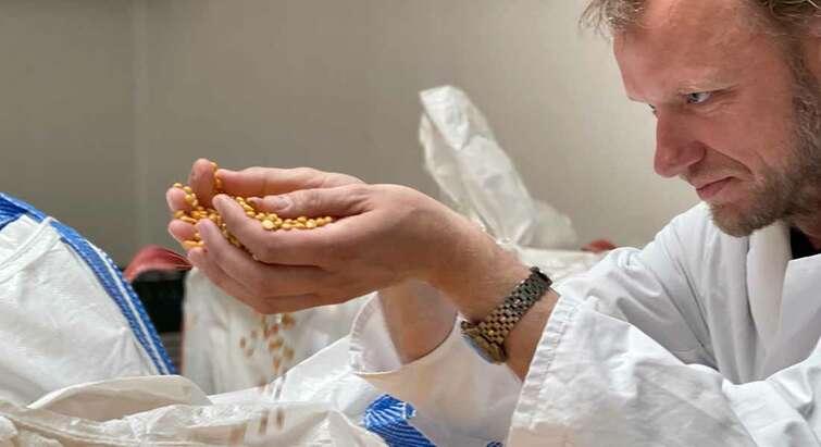 Professor Dennis Sandris Nielsen with yellow peas in his hands